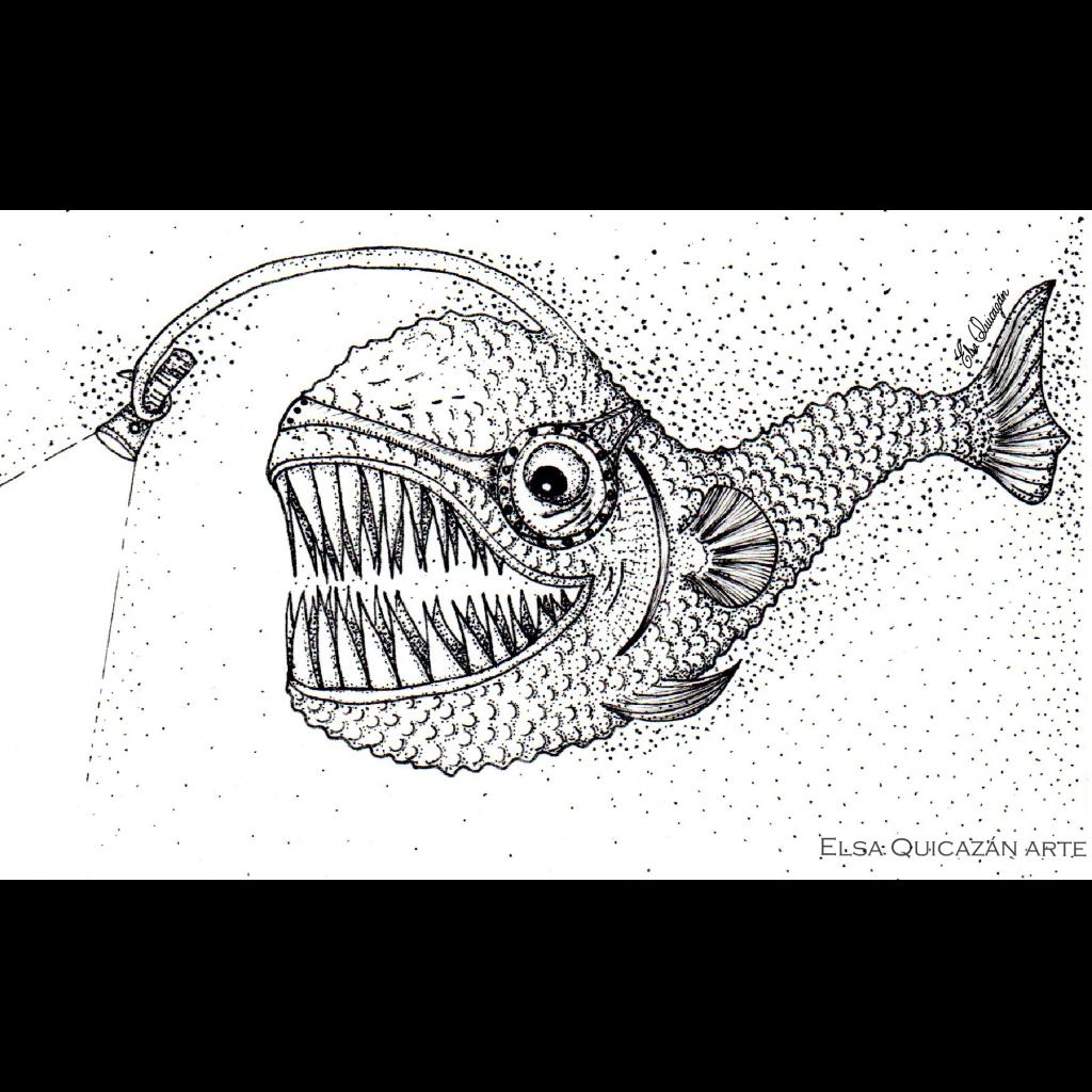 Fish from depths. Pez de profundidades