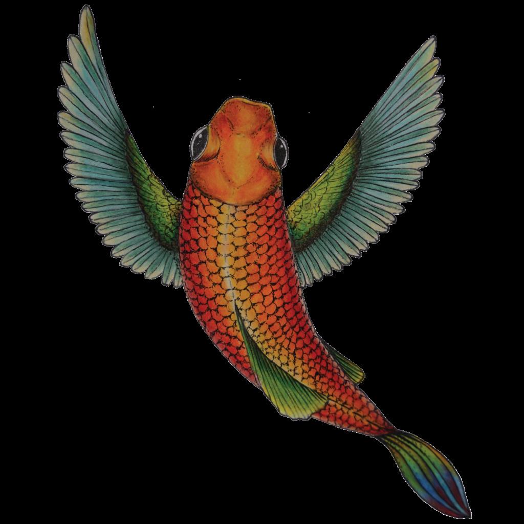 Fish bird. Pez ave